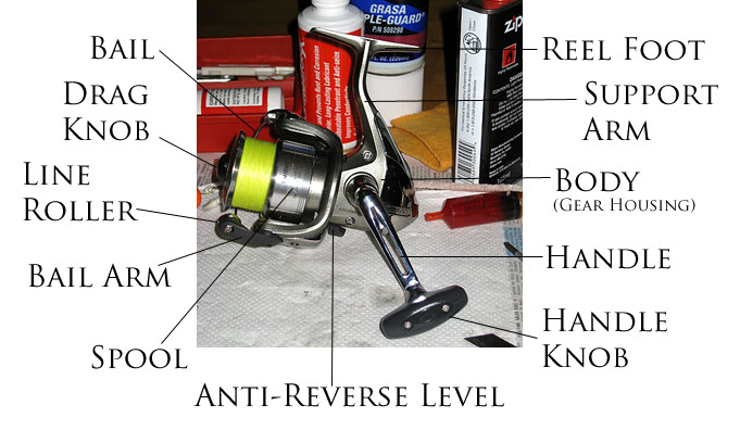 Fishing Reel Schematics Shimano Trusted Wiring Diagram